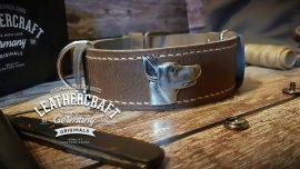 exklusive Hundehalsbänder aus Leder